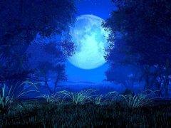 关于月亮的诗